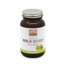 Absolute Amla Berry Extract 500mg - 60 capsules
